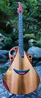GALAXIE  Wilgenbus guitars Luthier Réunion
