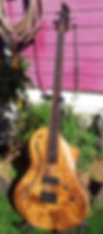 Model Forest Wilgenbus guitars Luthier Réunion
