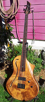 Model Forest Wilgenbus guitars Luthier Réunion