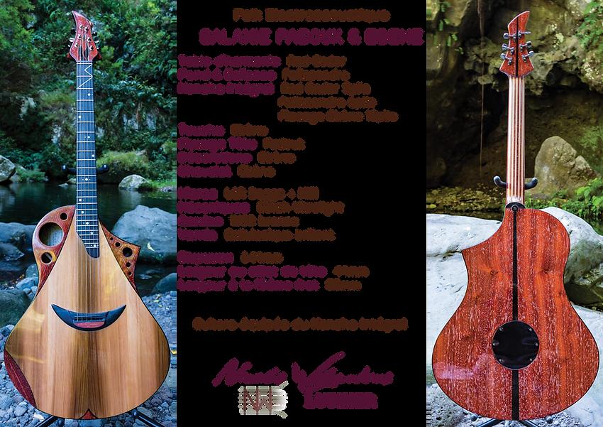Nicolas Wilgenbus Luthier Réunion