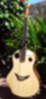 Clin d'Oeil Folk Guitares  Wilgenbus Nicolas Luthier Inventeur la Reunion