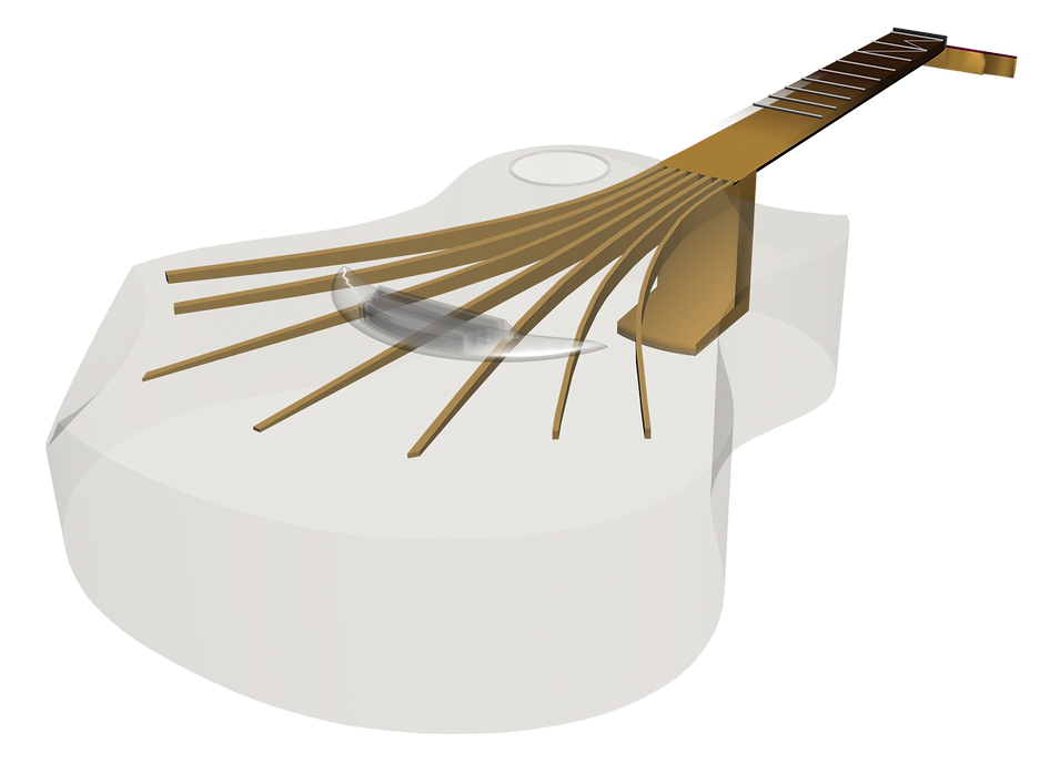 Integral Neck® Invention by Luthier Nicolas Wilgenbus, Reunion Island