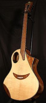 Saturne Wilgenbus guitars Luthier Réunion