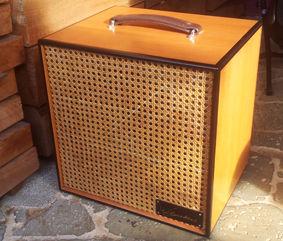 Caisson Baffle Guitares Wilgenbus Nicolas Luthier Inventeur la Reunion