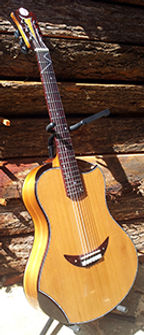 Clair de lune Guitares Classique  Wilgenbus Nicolas Luthier Inventeur la Reunion