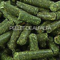 Pellet De Alfalfa