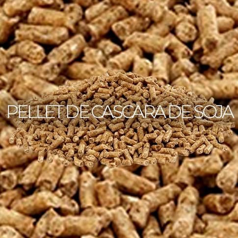 PELLET DE CASCARA DE SOJA