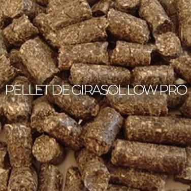 PELLET DE GIRASOL LOW PRO 31%
