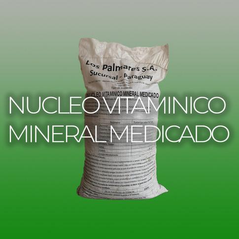 NUCLEO VITAMINICO MINERAL MEDICADO