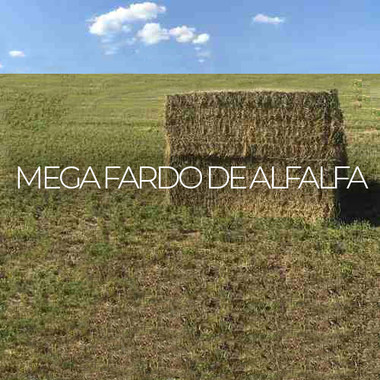 Mega Fardo De Alfalfa