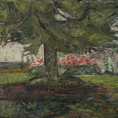 Piantone, 1935-40 Olio su tela, cm.70x90 Verbania, Museo del Paesaggio (deposito)