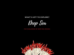 What's Left to Explore? Deep Sea Frontiers
