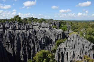 EXPLORING MADAGASCAR'S STONE FOREST