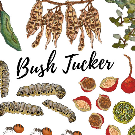 What is Bush Tucker?