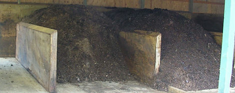 Compost Unedited_edited_edited.jpg