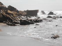 Detoxing sea breeze