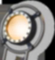 lt381-capsule.png