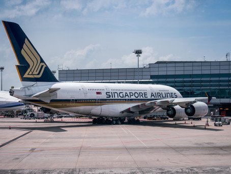 SINGAPORE AIRLINES CANCELS 96% OF FLIGHTS
