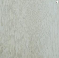 Сосна белая