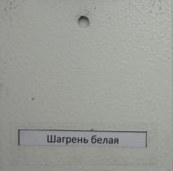 shagren belaya_485x480