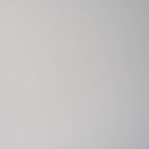 Pitura White