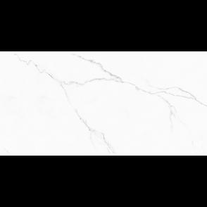 Snowy+Carrara+24+x+48.png