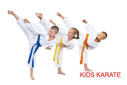 4-1 hr Karate Private Lesson Package
