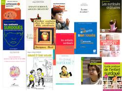 Pêle-mêle_couvertures_livres_biblio_2.003.jpg