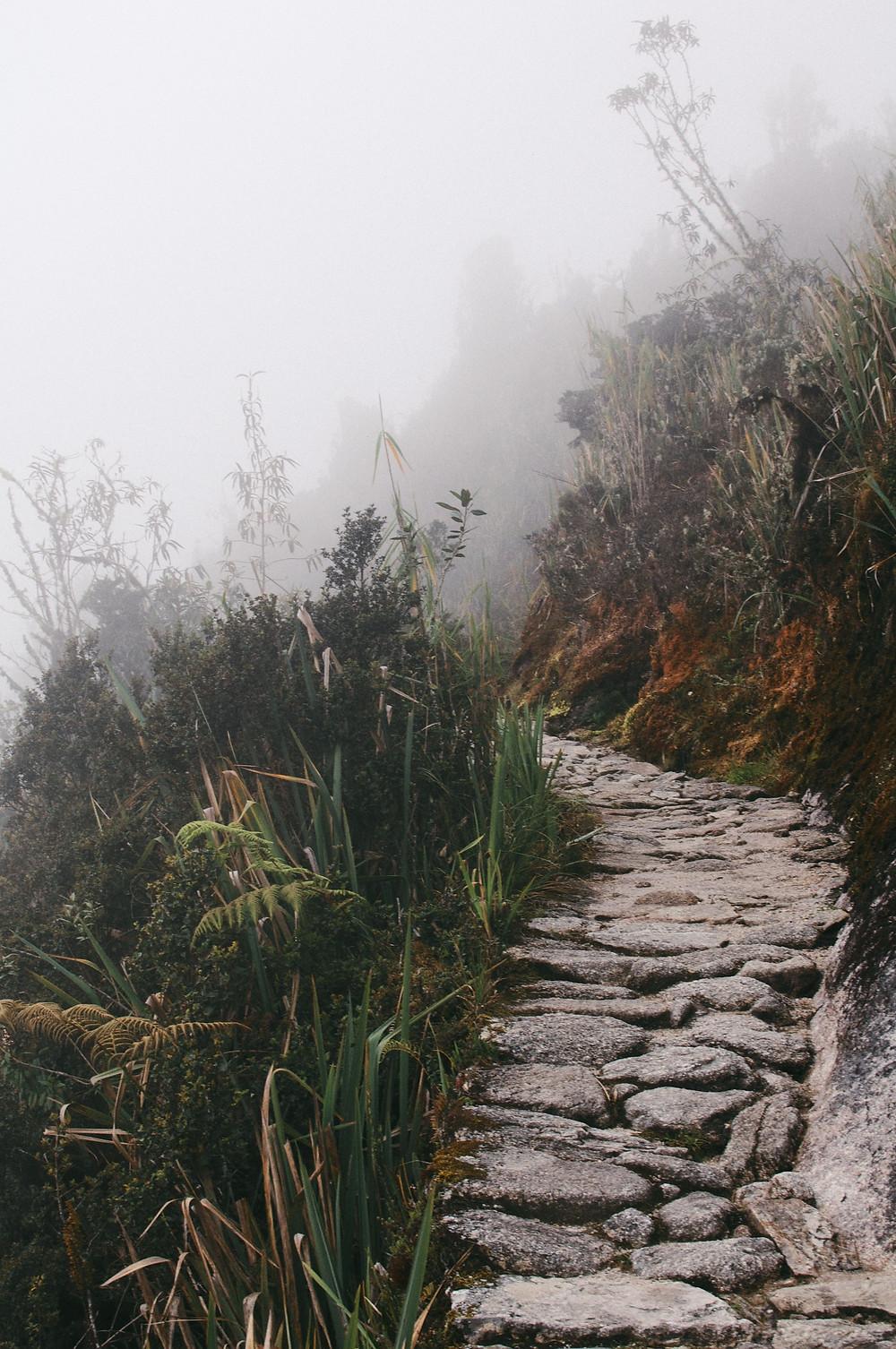 chemin meditation
