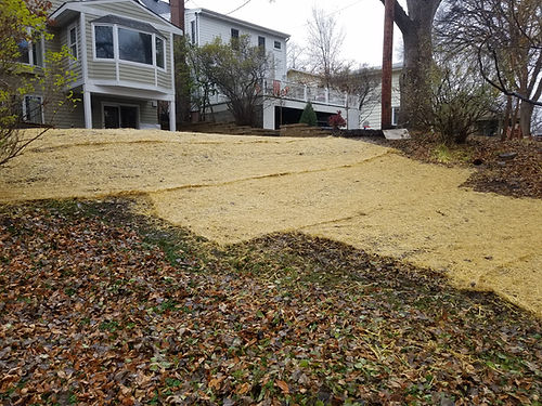 Lawn Restoration and Erosion Control.jpg