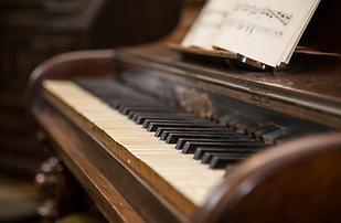 GINSENG PIANO.tiff