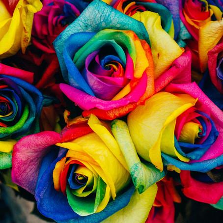 Nem tudo são flores!