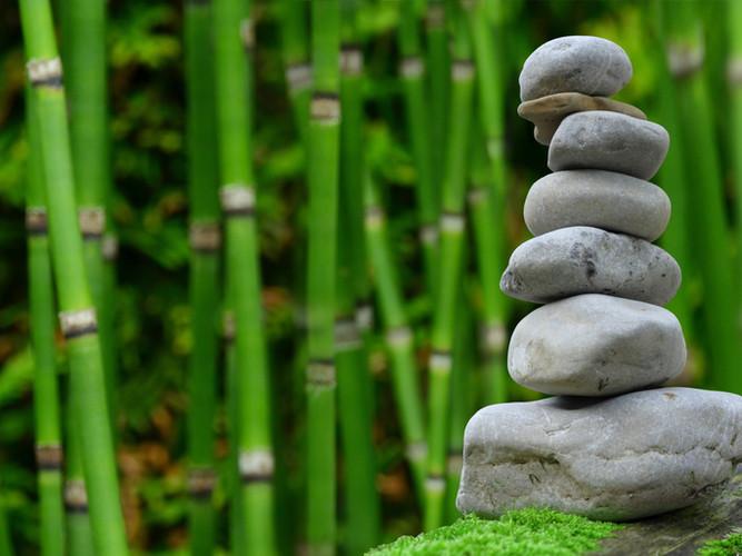 Rocks and Bamboo