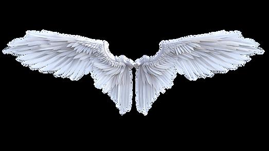 angel-4870052_1920.png