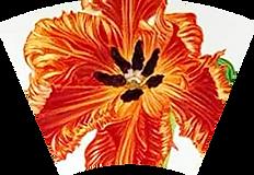 tulip_seg.png
