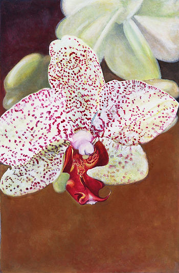 Orchid_pic.jpg