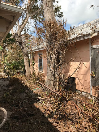 Irma's destruction