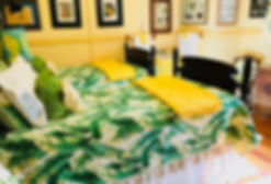 Yellow room with sink and 2 single beds/
