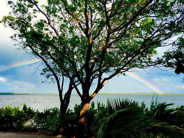 Historic Shadow Point Vacation Rental in Key Largo