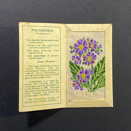 Polyanthus - Silk Embroidery 1933 Cigarette Card