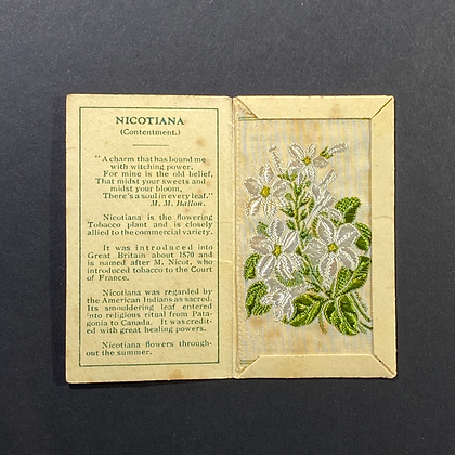 Nicotiana - Silk Embroidery 1933 Cigarette Card