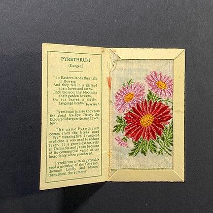 Pyrethrum - Silk Embroidery 1933 Cigarette Card