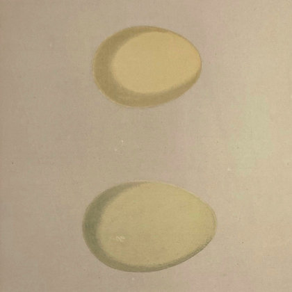 Smew and Golden Eye, Egg Print Circa 1890