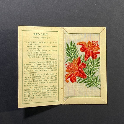 Red Lily - Silk Embroidery 1933 Cigarette Card