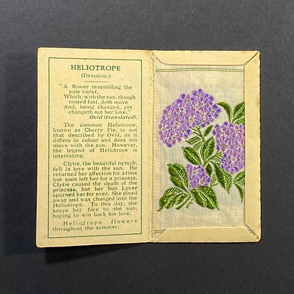 Heliotrope - Silk Embroidery 1933 Cigarette Card