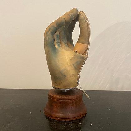 Mounted Prosthetic Hand
