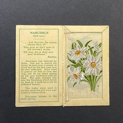 Narcissus - Silk Embroidery 1933 Cigarette Card