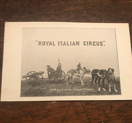 Royal Italian Circus Postcard