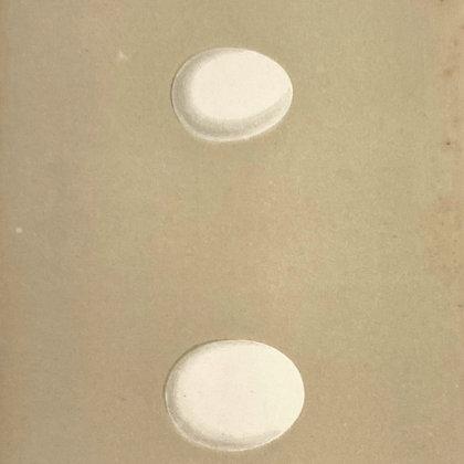 Tengman's Owl and Hawk Owl, Egg Print Circa 1890