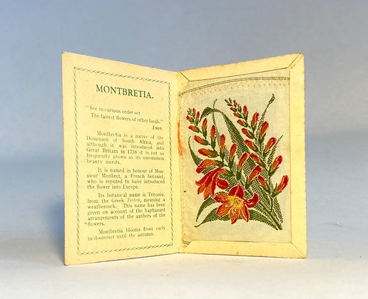 Montbretta - Silk Embroidery 1933 Cigarette Card